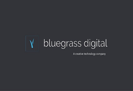 [South Africa] Bluegrass Digital invests in cloud provider Veeva Systems